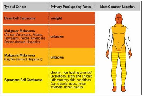 Photo - What is Skin Cancer 3 - SAMPLE ONLY.jpg